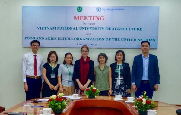 Hội đàm giữa tổ chức FAO và đại diện Học viện Nông nghiệp Việt Nam