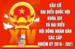 PGS TS Nguyễn Thị Lan trúng cử Đại biểu quốc hội khóa XIV