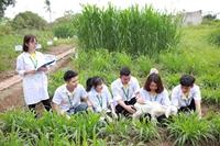 Khởi nghiệp nông nghiệp Tạo động lực từ khơi thông chính sách