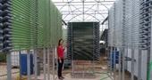 Công nghệ nhân sinh khối vi tảo trong hệ thống photobioreactor
