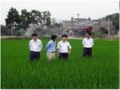 Nghiên cứu xử lý chất thải chăn nuôi