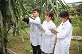 Ngành khoa học cây trồng