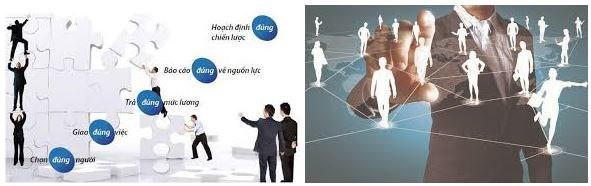 Cử nhân Quản lý và phát triển nguồn nhân lực có cơ hội làm việc rất rộng mở (Ảnh: Internet)