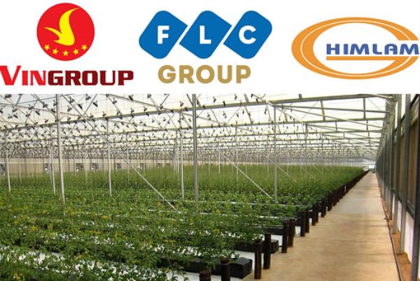 Nông nghiệp Việt Nam đón nhận làn sóng đầu tư lớn chưa từng có