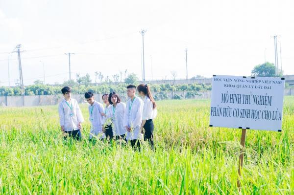 Sinh viên tham quan mô hình thử nghiệm phân hữu cơ vi sinh cho lúa