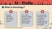 Xã hội học - Một ngành đa dạng về môi trường công việc