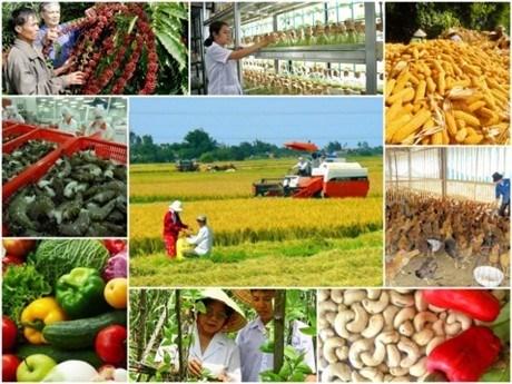 Nông nghiệp là ngành sản xuất vật chất cơ bản của xã hội (Ảnh: Báo Phapluatnet)
