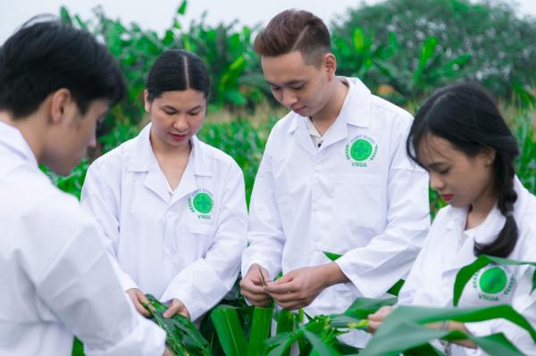 Sinh viên thực hành về phát hiện các loại sâu bệnh trên đồng ruộng