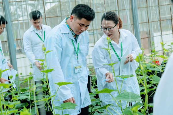 Sinh viên thực hành trong nhà lưới của Học viện