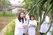 Giải mã lý do chọn ngành Khoa học cây trồng tại Học viện Nông nghiệp Việt Nam