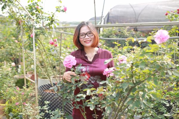 Bà Lê Thị Thu Hằng - Cựu sinh viên HVN (Khóa 50), chủ cơ sở sản xuất hoa hồng tại Gia Lâm, Hà Nội (diện tích 6ha và trên 600 giống)