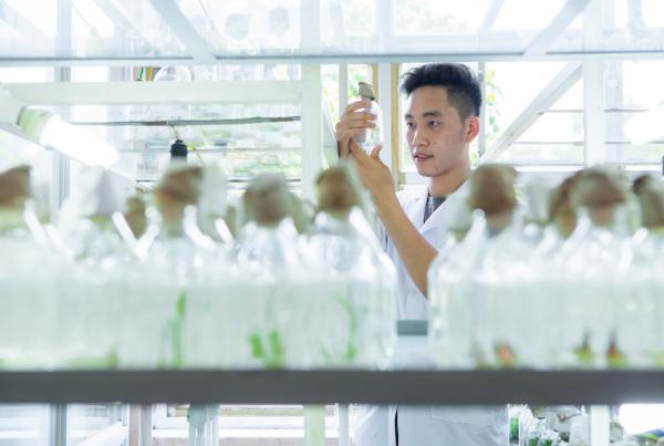 Một phòng thí nghiệm Học viện Nông nghiệp Việt Nam
