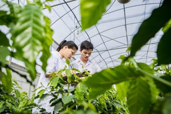 Sinh viên ngành Khoa học cây trồng tiên tiến tham gia nghiên cứu khoa học và đạt giải thưởng khoa học công nghệ