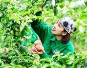 Phát triển nông nghiệp thích ứng với thị trường và biến đổi khí hậu