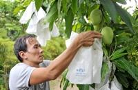 Phát triển nông nghiệp Việt Nam Kiến nghị một số giải pháp