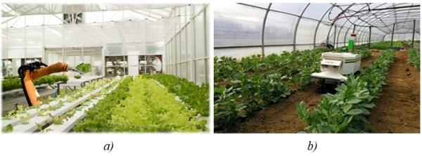 Hình 5. Robot chăm sóc cây trồng