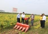 Ứng dụng tiến bộ khoa học công nghệ xây dựng mô hình áp dụng cơ giới hóa vào sản xuất đậu tương tại tỉnh Thái Bình