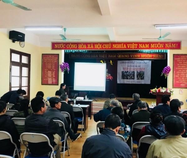Th.S Vũ Thị Xuân Bình – chủ nhiệm dự án Báo cáo Kết quả thực hiện mô hình tại xã Song Phương, huyện Hoài Đức