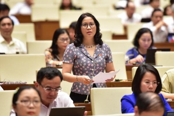 GS. TS Nguyễn Thị Lan phát biểu tại phiên họp của Quốc hội