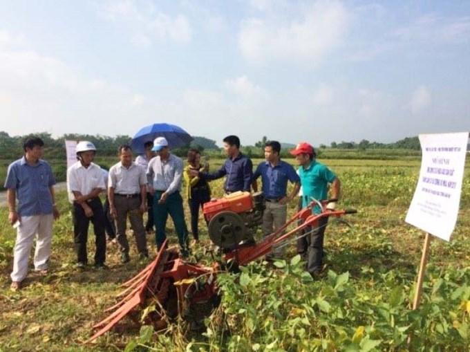 Trình diễn máy thu hoạch cây đậu tương