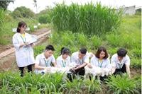4 671 chỉ tiêu dành cho ai muốn là sinh viên Học viện Nông nghiệp Việt Nam