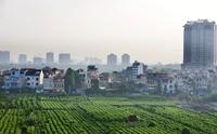 Thực trạng và đề xuất chính sách phát triển nông nghiệp đô thị TP Hà Nội