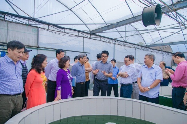 Cựu sinh viên lớp Nông hóa - Thổ nhưỡng khóa 24 nghe giới thiệu về mô hình nuôi trồng tảo xoắn Spirulina