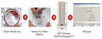 Định danh vi sinh vật bằng công nghệ khối phổ protein MALDI TOF MS