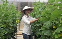 Báo cáo tóm tắt kết quả đề tài nghiên cứu cấp Học viện do dự án Việt Bỉ tài trợ năm 2020