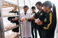 Học viện Nông nghiệp Việt Nam tiếp tục đào tạo nguồn nhân lực chất lượng cao cho ngành nấm