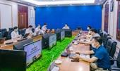 """Hội thảo """"Phát triển sản xuất cây vải Việt Nam theo chuỗi liên kết"""""""