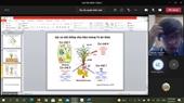 """Seminar khoa học tuần 40 – Nhóm nghiên cứu mạnh """"Công nghệ chọn tạo và phát triển giống cây trồng"""""""