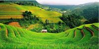 Các phương pháp đánh giá thoái hóa đất