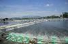 Những khuyến cáo đối với các cơ sở nuôi trồng thủy sản trước mùa mưa bão