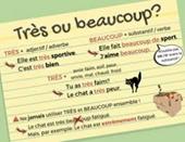 Hướng dẫn học ngữ pháp tiếng Pháp căn bản