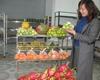 Hà Nội Giải pháp nâng cao tính khả thi một số cs nông nghiệp trên địa bàn thành phố