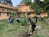 Hào hứng với tết trồng cây chào xuân mới 2021