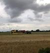 Nông nghiệp và người nông dân ở Đan Mạch dưới góc nhìn của thực tập sinh Khoa Chăn nuôi