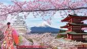 Thông báo Chương trình trao đổi sinh viên 2022 - Đại học Kagoshima, Nhật Bản