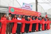 Nhìn lại hành trình dự án Khoai tây quê hương tại Việt Nam