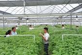 Chương trình đào tạo ngành Công nghệ sinh học chất lượng cao ở Học viện Nông nghiệp Việt Nam