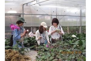 Kobe Exchange Students